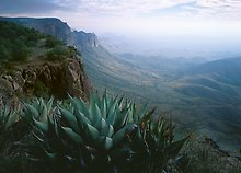Big Bend National Park.  ( )