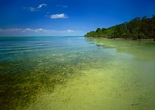Biscayne National Park.  ( )