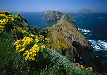 Channel Islands National Park.  ( )