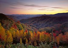 Great Smoky Mountains National Park.  ( )
