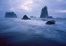 Olympic National Park.  ( )