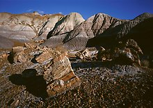 Petrified Forest National Park.  ( )