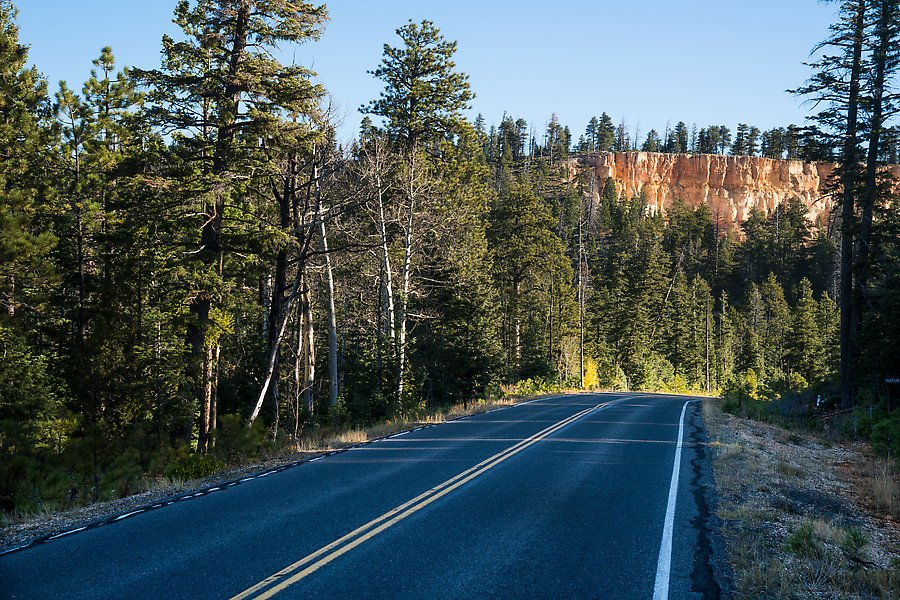 Park road. Bryce Canyon National Park.  ()