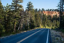 Park road. Bryce Canyon National Park.  ( )