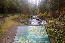 Sol Duc River. Olympic National Park.  ( )