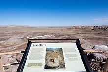 Jasper Forest. Petrified Forest National Park.  ( )