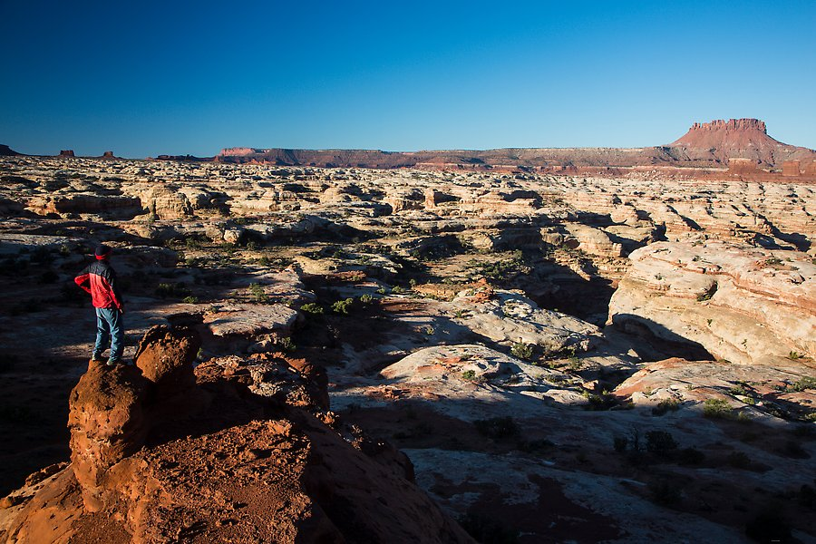Maze canyons. Canyonlands National Park.  ()