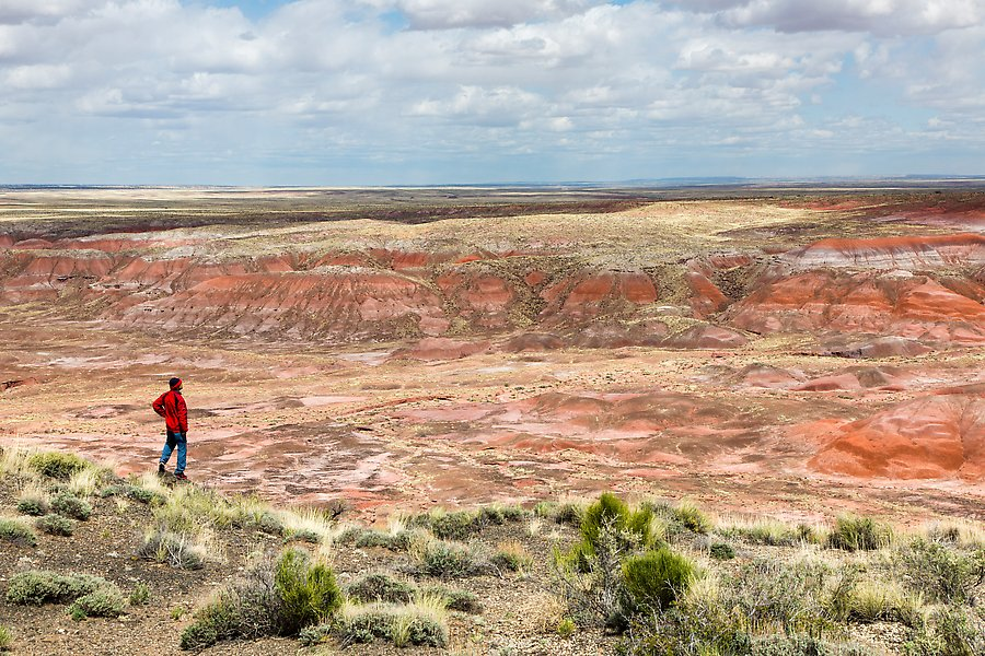Painted Desert near Tiponi Point. Petrified Forest National Park.  ()