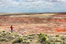Painted Desert near Tiponi Point. Petrified Forest National Park.  ( )