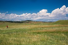 Prairie and rolling hills. Wind Cave National Park.  ( )